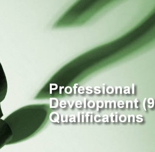 9200 Professional Development Qualifications